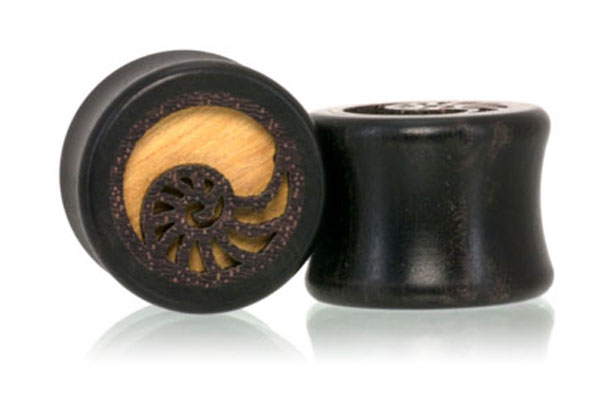 Nautilus Shell Ebony Plugs