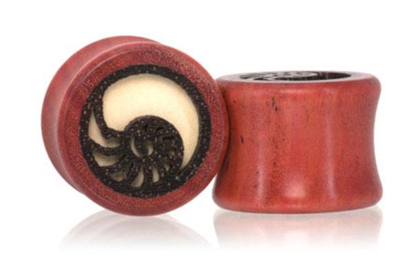Nautilus Shell Pink Ivory Plugs