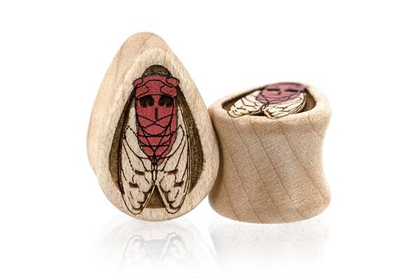 Cicada Teardrops