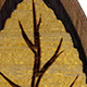 Osage Orange Autumn Leaf Teardrop Plugs