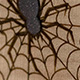 Curly Maple Spider Plugs