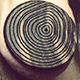 Growth Rings - CH