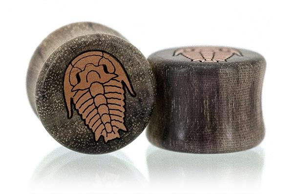 Blue Mahoe Trilobite Plugs