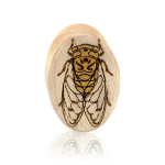 Cicada Ovals